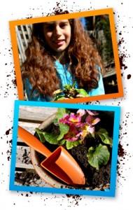 photo_3 twigz website wheelbarrow page